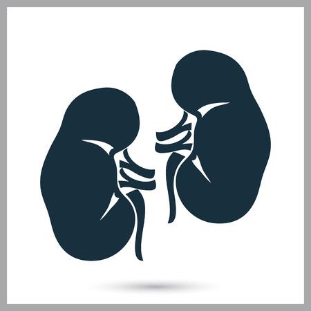kidneys: Human kidneys icon on the background Illustration