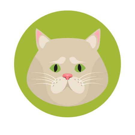 muzzle: Cat muzzle color flat icon Illustration