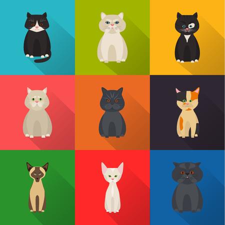 favorite colour: Cats color flat set icon Illustration