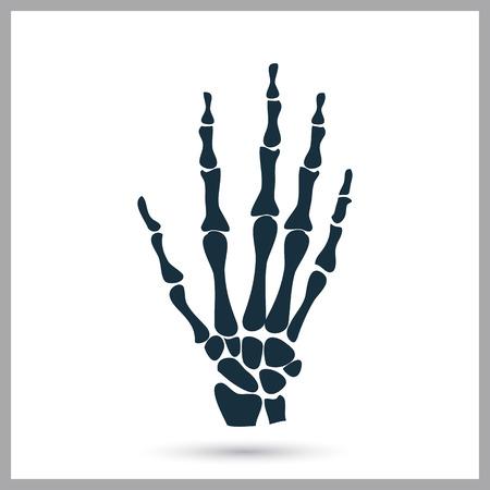 sceleton: Hand sceleton icon on the background