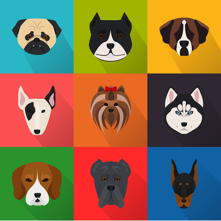 favorite colour: Dogs color flat set icon Illustration