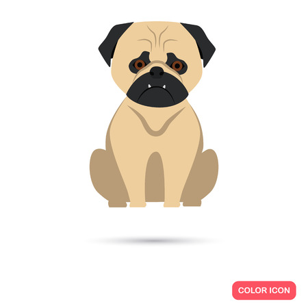 pug nose: Dog color flat icon