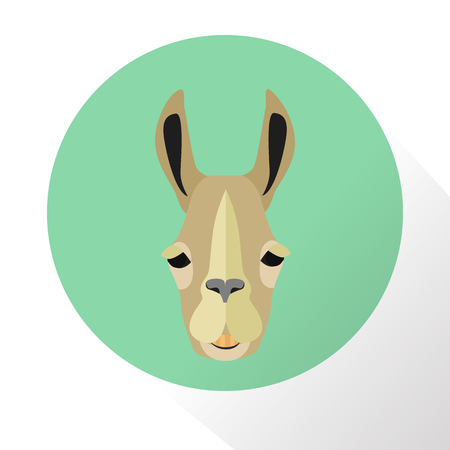 herbivorous animals: Lama color flat icon