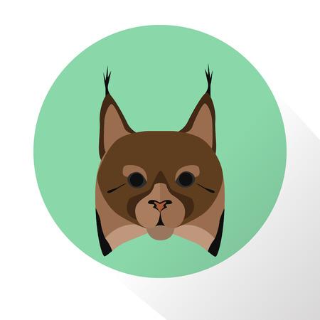 lynx: Lynx color flat icon