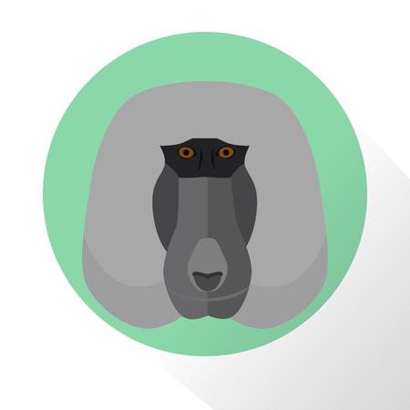 baboon: Baboon color flat icon