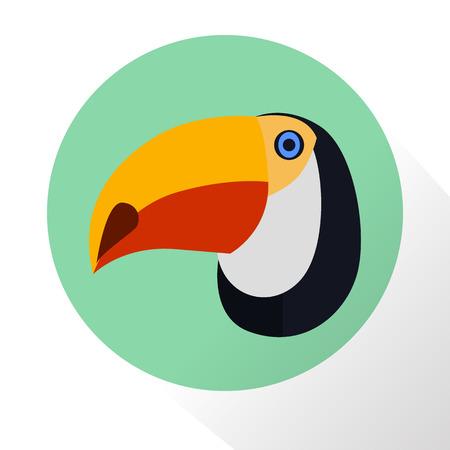 toucan: Toucan color flat icon
