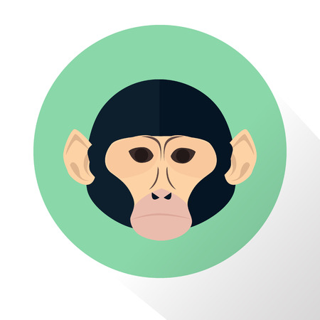 chimpanzee: Chimpanzee color flat icon Illustration