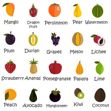 persimmon: Set of twenty color flat fruits icons