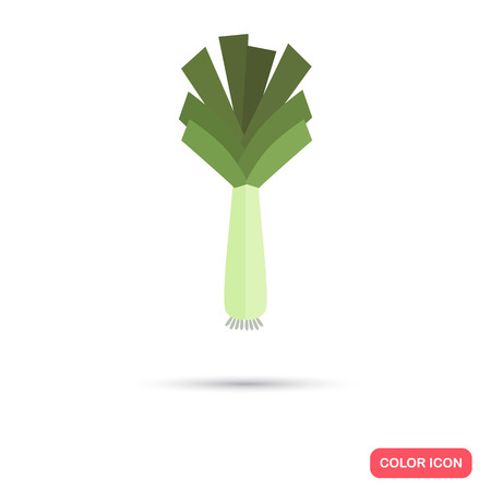 leek: Leek color flat icon Illustration