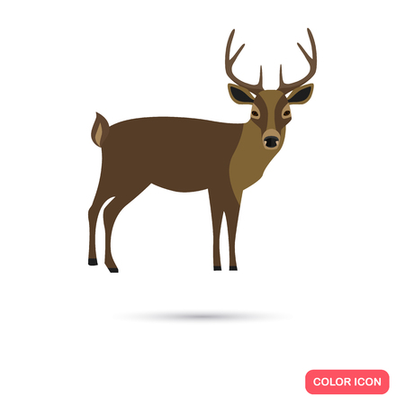 ungulate: Derr color flat icon