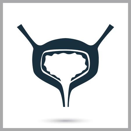 urine: Human bladder icon on the background
