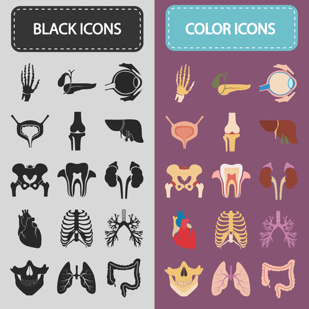 glands: Set of sixteen human organs and anatomic parts color and black flat icons Illustration