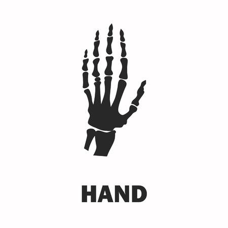 human hand: Human hand skeleton black icon Illustration