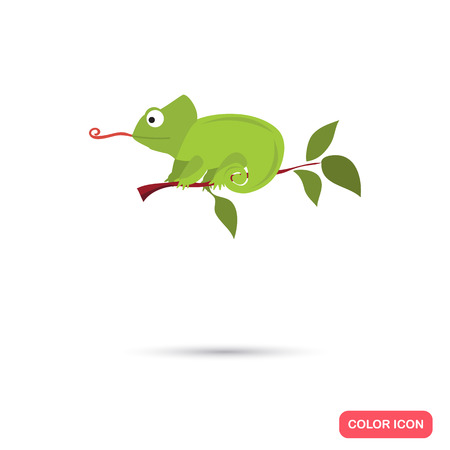 Chameleon on the branch color flat icon
