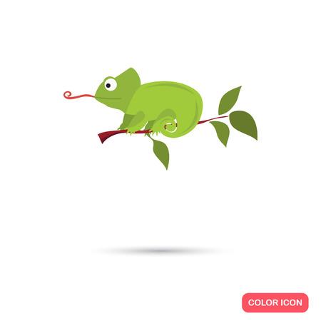 Chameleon on the branch color flat icon 版權商用圖片 - 62027236