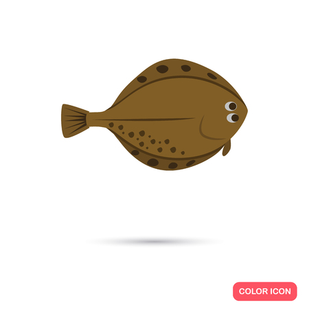 flounder: Flounder color flat icon
