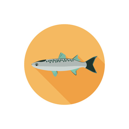 mullet: Mullet fish color flat icon Illustration