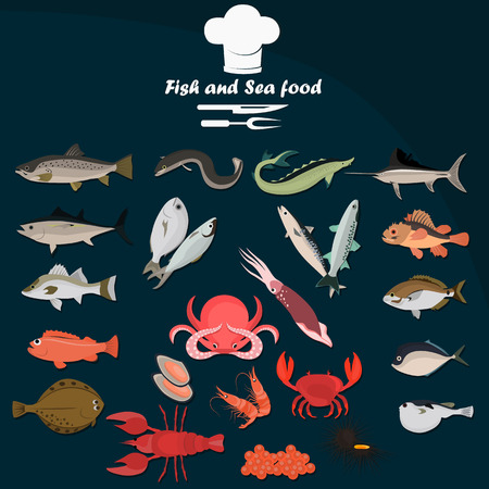 edible: Set of color flat sea food and fish color icons. Flat design