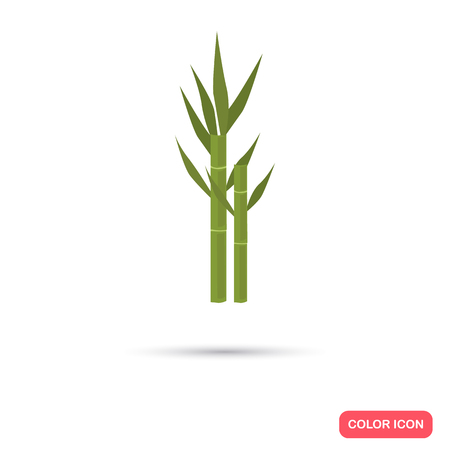 Sugar cane agriculture crop. Color flat icon