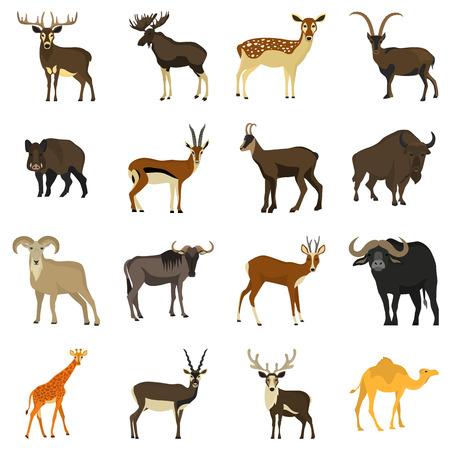 hoofed: Set of color flat hoofed animals icons Illustration