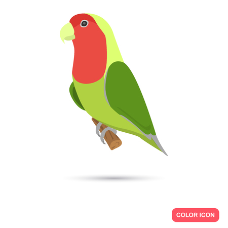 Lovebird color flat icon for web and mobile design Illustration