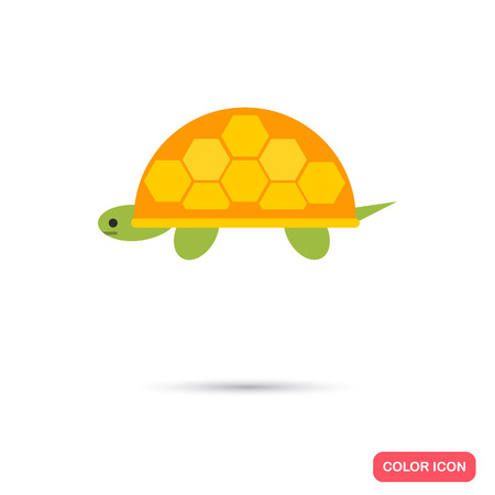 slowness: Turtle color flat icon Illustration