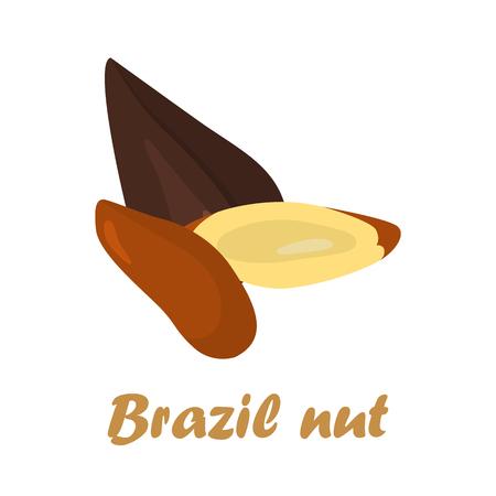 albero nocciolo: I nocciole di colore brasiliano sono icone a colori nel design del fumetto