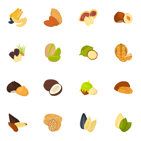 Set of color nuts icons in cartoon design Illustration