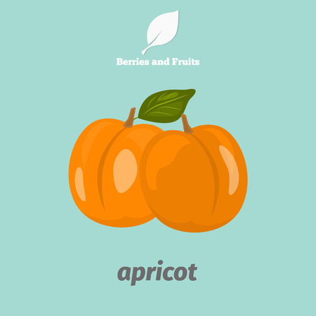 Apricot color icon. Cartoon style for web and mobile design