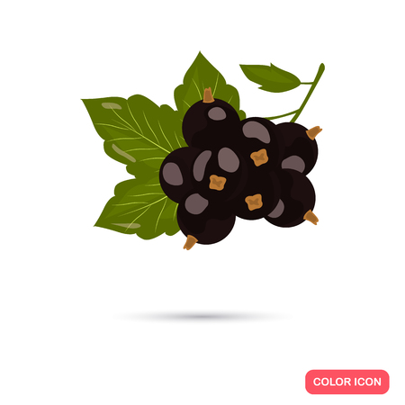 Black currant color icon. Cartoon style for web and mobile design Illustration