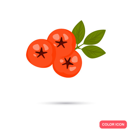 Rowanberry color icon. Cartoon style for web and mobile design