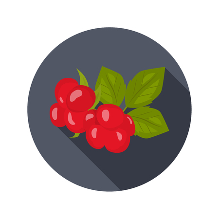 Stoneberry color icon. Cartoon style for web and mobile design