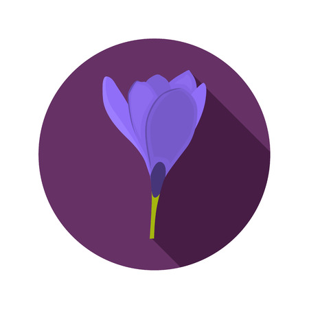 crocus color flat icon for web and mobile design vector