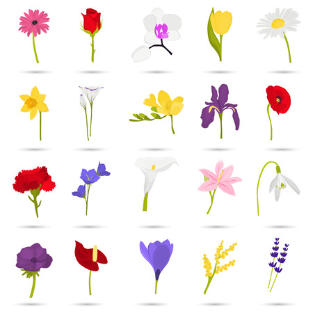 Set of different flowers color flat icons for web and mobile design