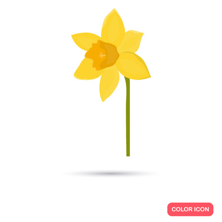 Narcissus flower color flat icon for web and mobile design