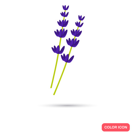 Lavander color flat icon for web and mobile design