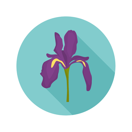 Iris color flat icon for web and mobile design