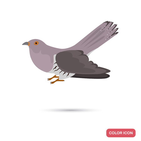 Cuckoo color flat icon for web and mobile design