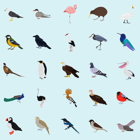 air: Set of color birds icons for web and mobile design