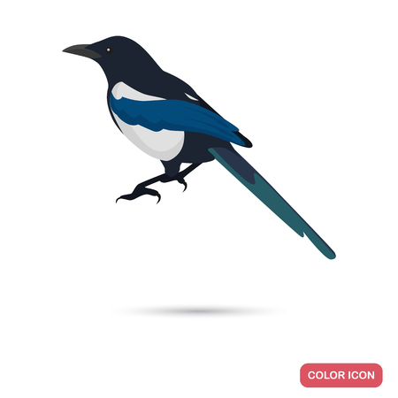Magpie color flat icon for web and mobile design