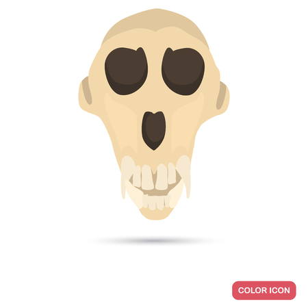 Monkey skull color flat icon for web and mobile design