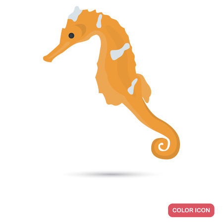 Sea horse color flat icon for web and mobile design Illustration