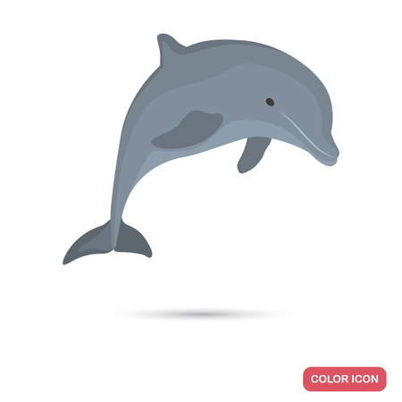 Dolphin color flat icon for web and mobile design Stock Illustratie