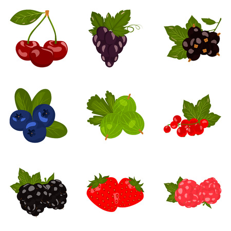 Set of color flat berries icons set for web and mobile design