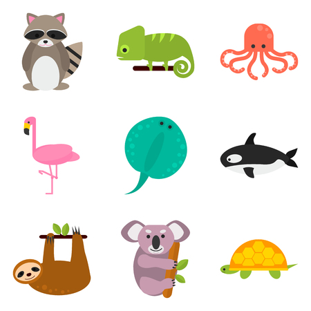 sloth: Set of color flat animals icons set for web and mobile design