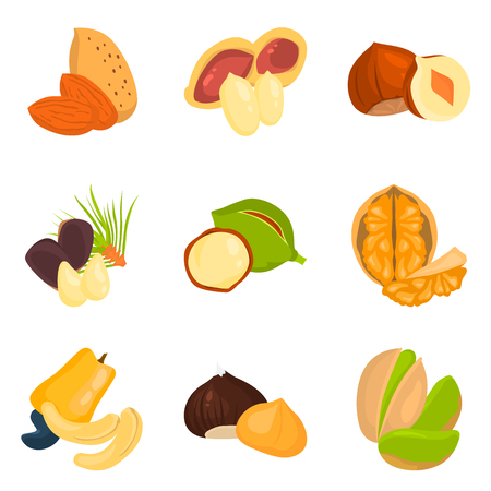 pistachios: Set of color flat nuts icons set for web and mobile design