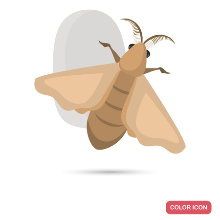 Silkworm and cocoon color flat icon for web and mobile design