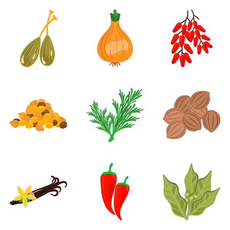 onions: Set of color flat spices icons set for web and mobile design
