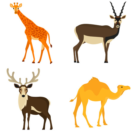 Set of hoofed animals color flat icons for web and mobile design Illustration