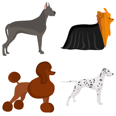 Set of dogs breeds color flat icon for web and mobile design Illustration